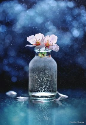 Blumen_im_Glas