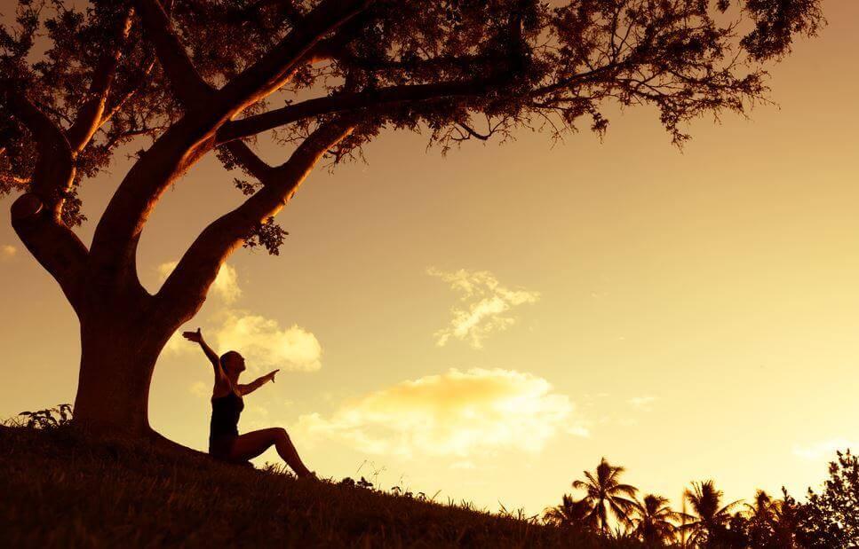 Weisheit habe ich erreicht, wenn ich nichts und niemandem mehr die Schuld für für meine Situation gebe