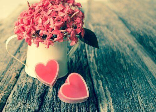 Lass Liebe in dein Leben