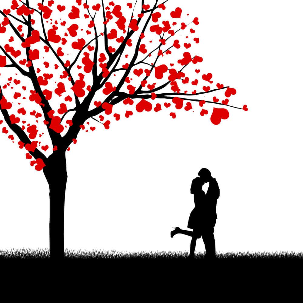 Experiment - Können wir uns in den Menschen verlieben, in den wir uns verlieben wollen?