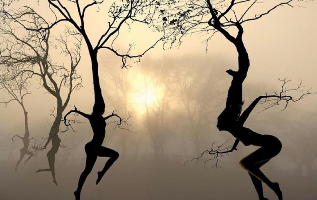 Ein Leben mit Flügeln oder Wurzeln – Beständigkeit oder Wandel?