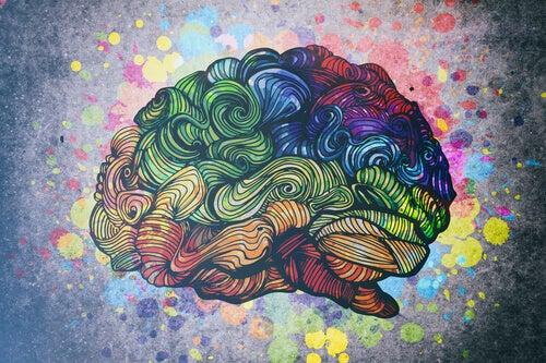 Der Mensch und seine 8 Intelligenzen
