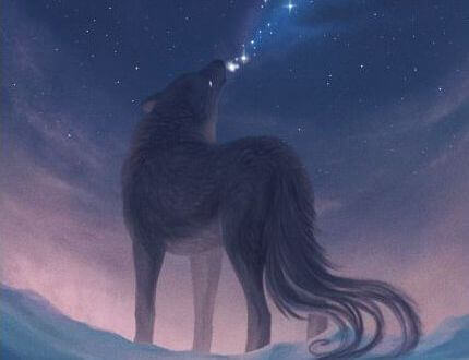 Heulender-Wolf
