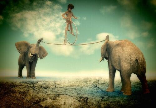 Kind-balanciert-auf-Seil-gespannt-zwischen-zwei-Elefanten
