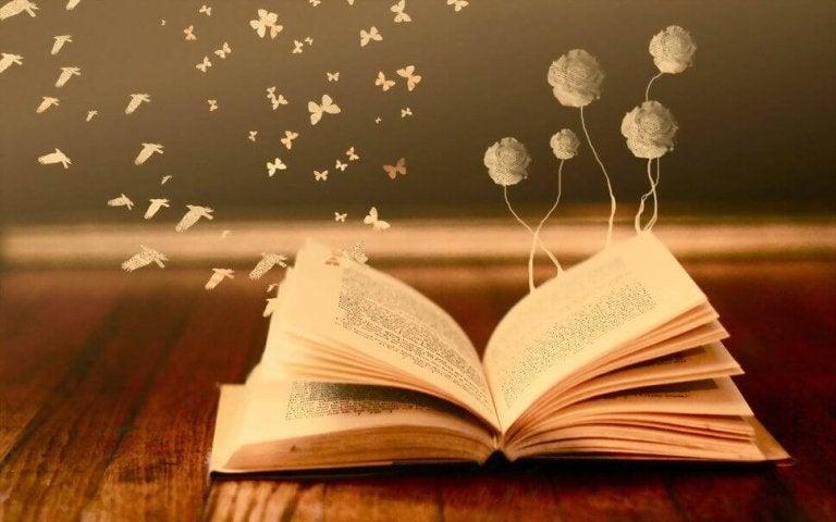 Es lohnt sich, wenn dir eine Träne gestohlen wird, solange der Dieb ein Buch ist