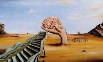 Weg-zum-Gehirn