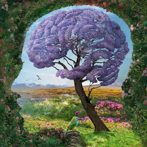 Gehirn Natur