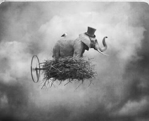 Elefant auf einer Wolke