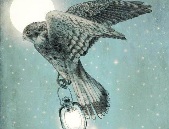Falke-bringt-Licht