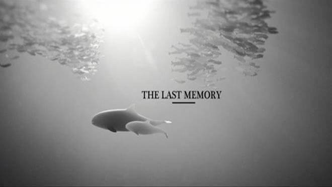 Dieser bewegende Kurzfilm zeigt dir die erschreckende Realität unserer Ozeane