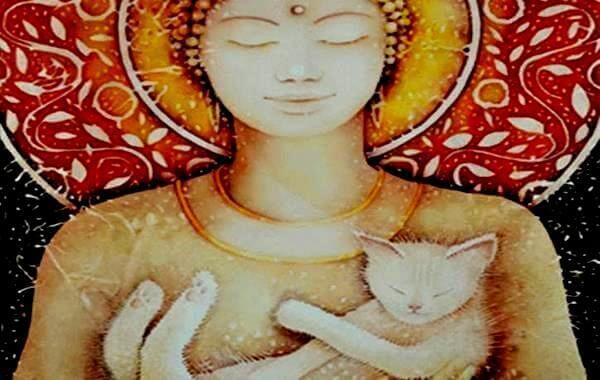 Katzen im Buddhismus