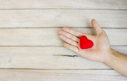 Wenn du fällst, reiche ich dir meine Hand - und mein Herz