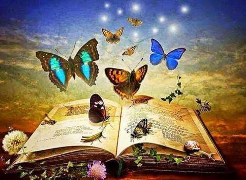 Magisches Buch voller Schmettelinge