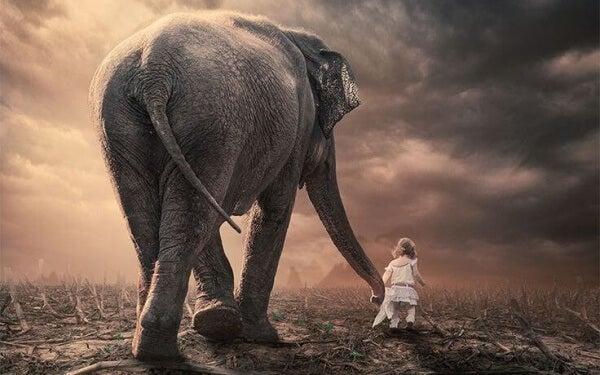 Kind geht mit Elefant spazieren