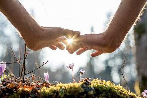 Hand-ueber-Blumen