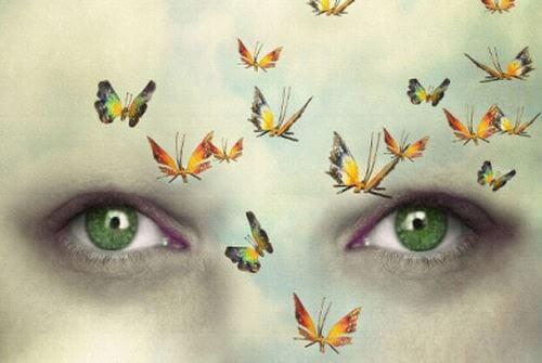 Schmetterlinge vor grünen Augen