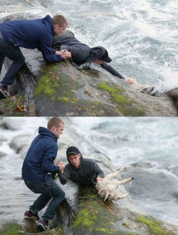 Rettung eines Lamms aus den Fluten