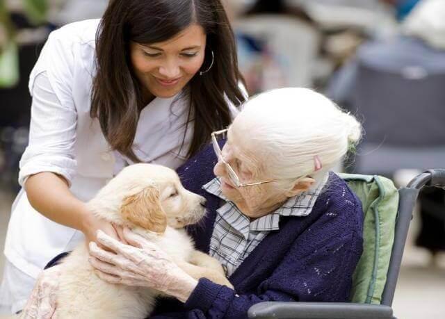 Rentnerin mit Hund