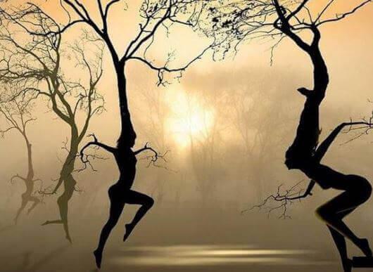 Siluetten von Frauen in Bäumen