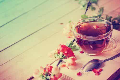 Camellia Sinensis: Die Vorzüge von Tee