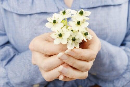 Kleines Blumensträußchen, um um Vergebung zu bitten