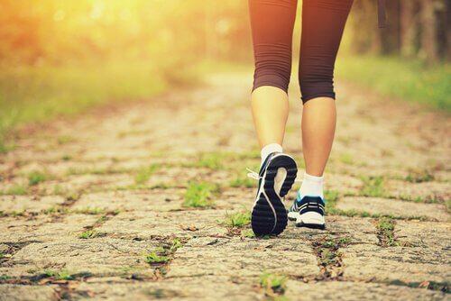 Jogging-im-Wald