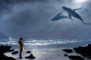 Junger Mann schaut in den Himmel und bewundert die Wale