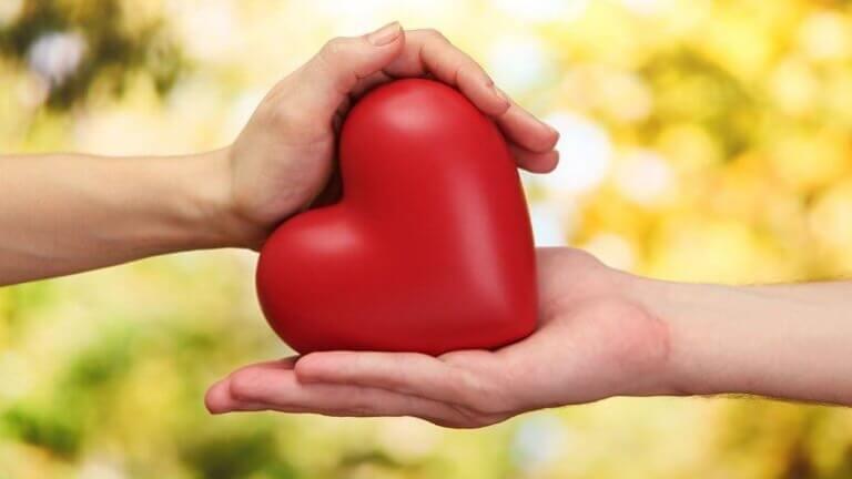 zwei-Haende-halten-ein-rotes-Herz