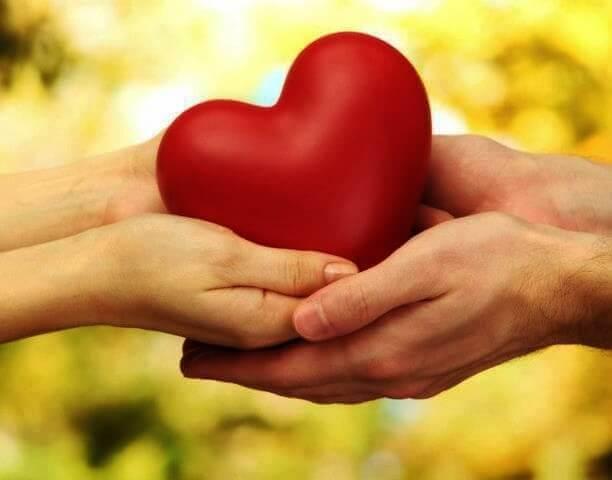 zwei-Hanede-halten-ein-Herz