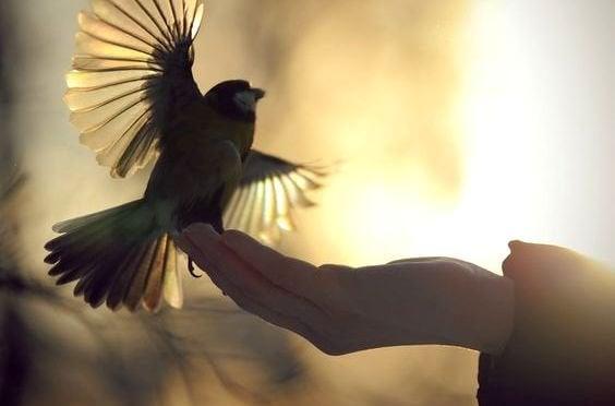Freundlichkeit kostet nichts, ist aber viel wert
