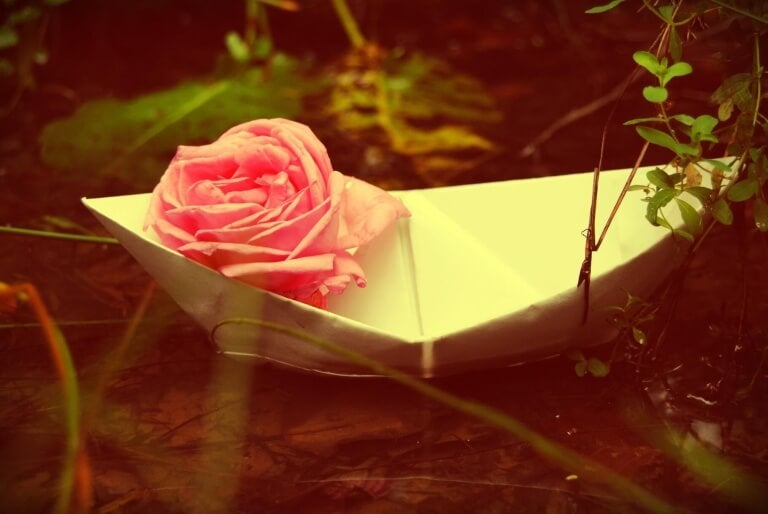rose-in-papierboot