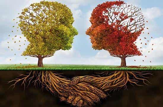 10 Arten von Psychologen