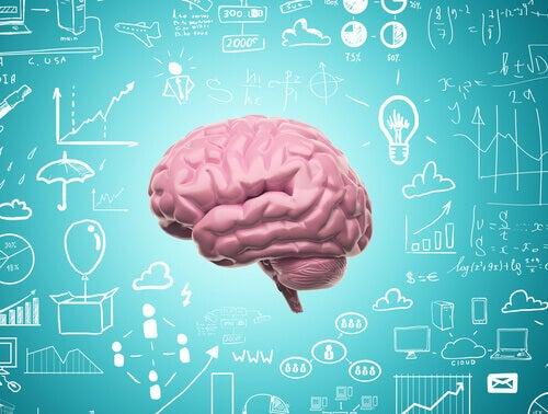 Dank unserer Neuroplastizität hören wir nie auf zu lernen