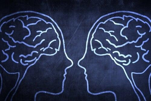 Der Zusammenhang zwischen Spiegelneuronen und Empathie