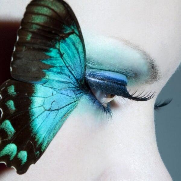 Die Legende vom blauen Schmetterling