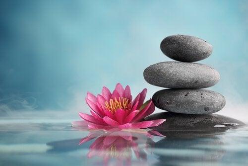 29 zen weisheiten um dich zu inspirieren gedankenwelt for Imagenes zen