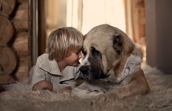 junge-und-hund