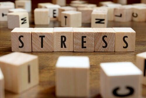 Wie Stress sich auf unsere Gesundheit auswirkt