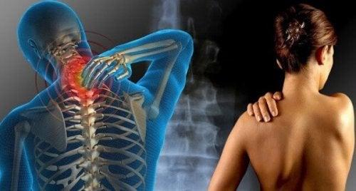 Schmerzen in Nacken und oberem Rücken