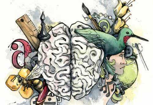 Was ist deine dominante Intelligenz?