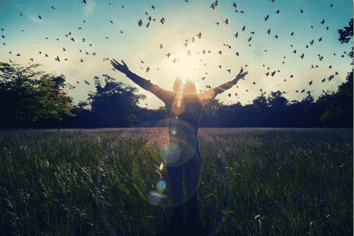 Ist es nicht wunderschön, zu träumen, wenn noch alles möglich ist?