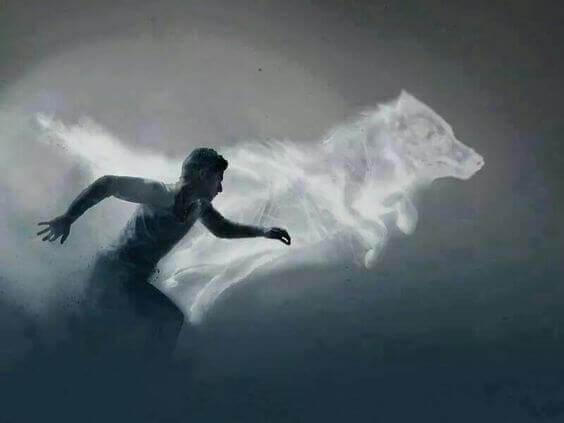 mann-und-wolf-träumen