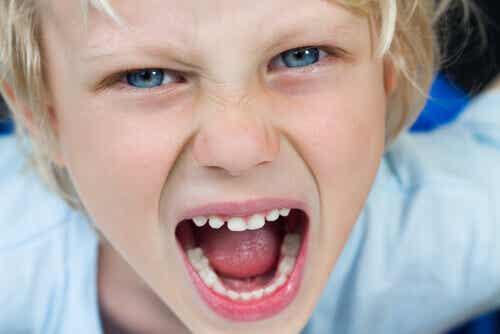 4 Fehler bei der Erziehung, die ein tyrannisches Kind hervorbringen