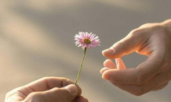 5 Zeichen der Reife, die für die Liebe notwendig sind
