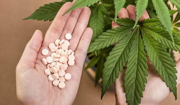 Mythen und Wahrheiten über Marihuana