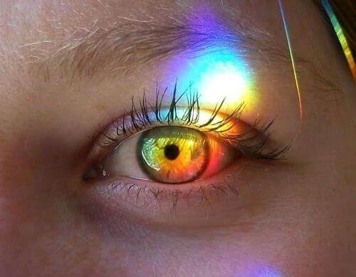 Buntes Auge