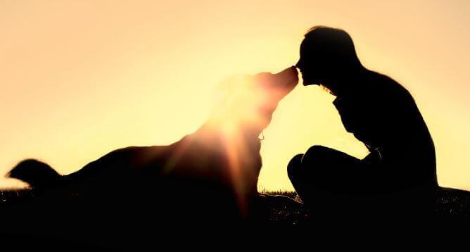 Eine Frau mit ihrem Hund bei Sonnenuntergang