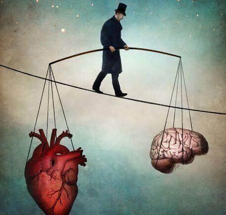 Hast du die richtige Entscheidung getroffen, die Balance zwischen Herz und Hirn gefunden?