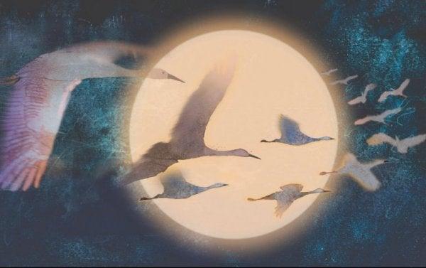 Ein Vogelschwarm fliegt vor einem vollen Mond.