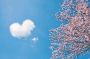Chinesische Weisheiten - Wolkenherz neben Kirschblütenbaum